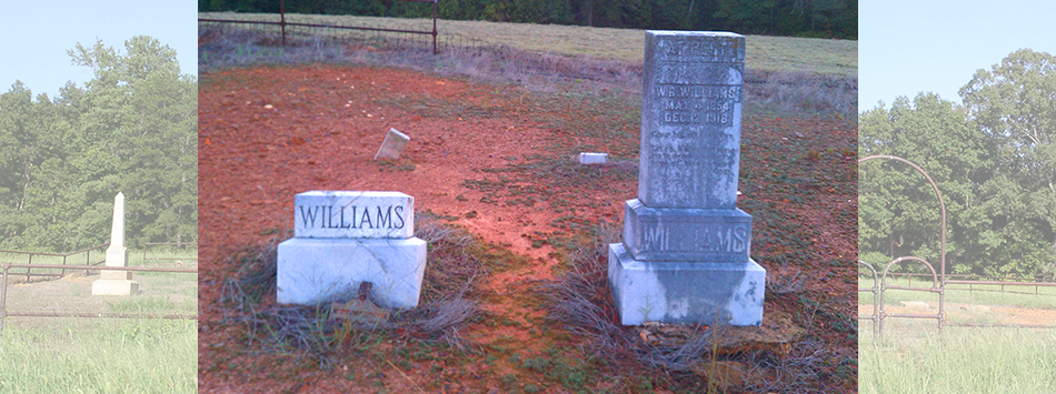 Williams Markers